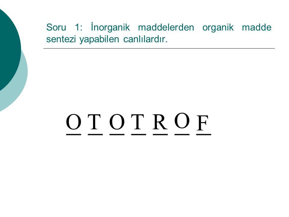 Soru 1: İnorganik maddelerden organik madde sentezi yapabilen canlılardır. _ _ _ _ _ _ _ OTT O F RO