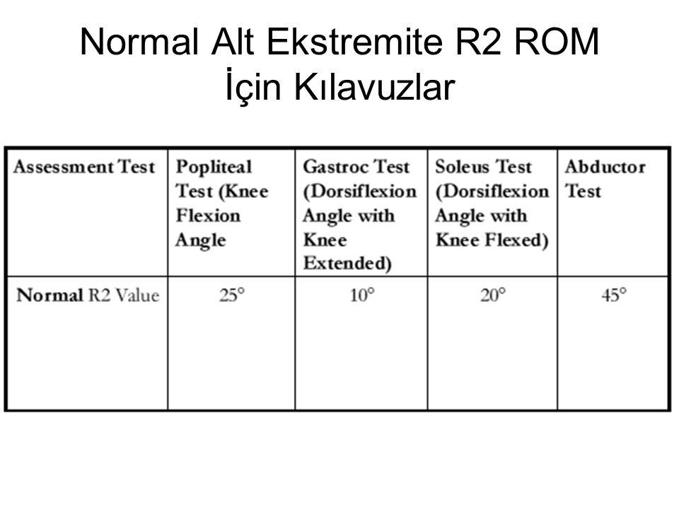 Normal Alt Ekstremite R2 ROM İçin Kılavuzlar