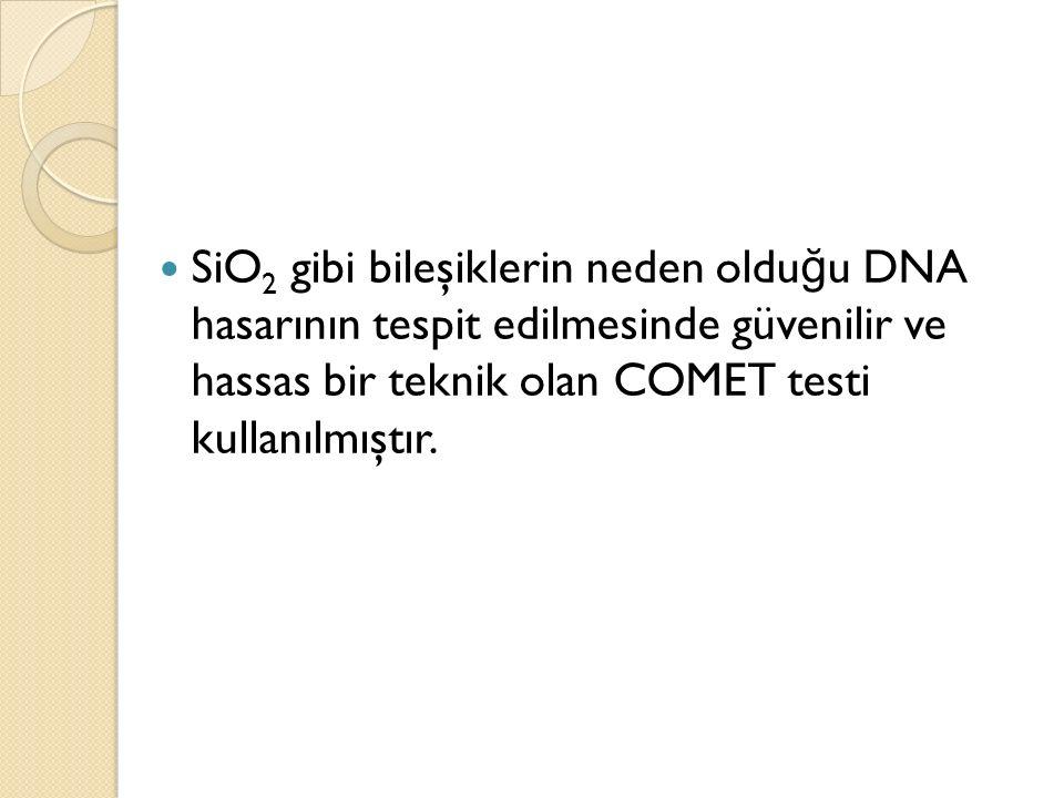 SiO 2 gibi bileşiklerin neden oldu ğ u DNA hasarının tespit edilmesinde güvenilir ve hassas bir teknik olan COMET testi kullanılmıştır.
