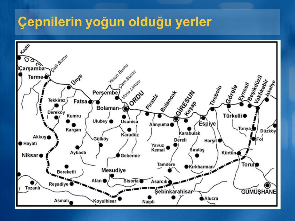 Günümüz Çepniler ayrıca; Ege bölgesinde Çanakkale, Manisa, İzmir; Marmara'da Balıkesir'de yaşarlar. Ayrıca Sivas, Gaziantep'te de Çepni köyleri vardır