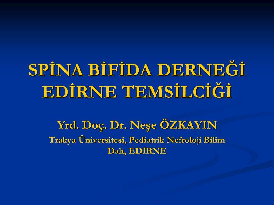 SPİNA BİFİDA DERNEĞİ EDİRNE TEMSİLCİĞİ Yrd. Doç. Dr. Neşe ÖZKAYIN Trakya Üniversitesi, Pediatrik Nefroloji Bilim Dalı, EDİRNE