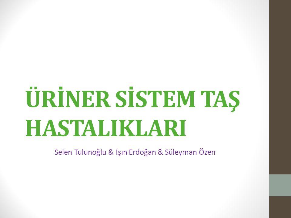 ÜRİNER SİSTEM TAŞ HASTALIKLARI Selen Tulunoğlu & Işın Erdoğan & Süleyman Özen