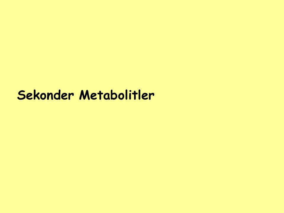 Sekonder Metabolitler