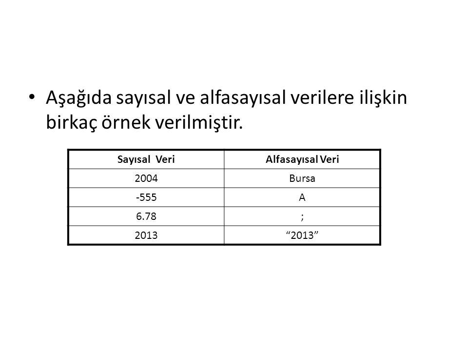 """Aşağıda sayısal ve alfasayısal verilere ilişkin birkaç örnek verilmiştir. Sayısal VeriAlfasayısal Veri 2004Bursa -555A 6.78; 2013""""2013"""""""