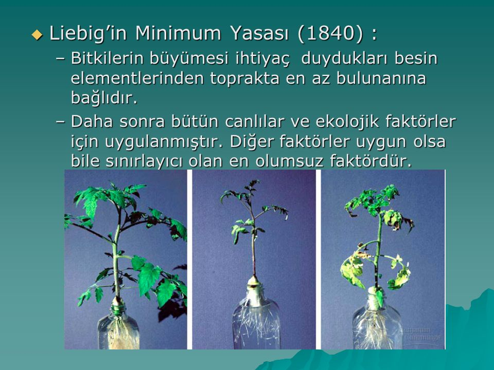 Liebig'in Minimum Yasası (1840) : –Bitkilerin büyümesi ihtiyaç duydukları besin elementlerinden toprakta en az bulunanına bağlıdır. –Daha sonra bütü