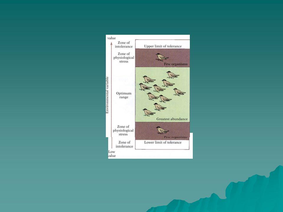 Ekolojik ilişkiler  Canlıların birbirleri ve çevreleriyle birlikte olan ilişkileri aksiyon, reaksiyon ve koaksiyon şeklinde olmaktadır.