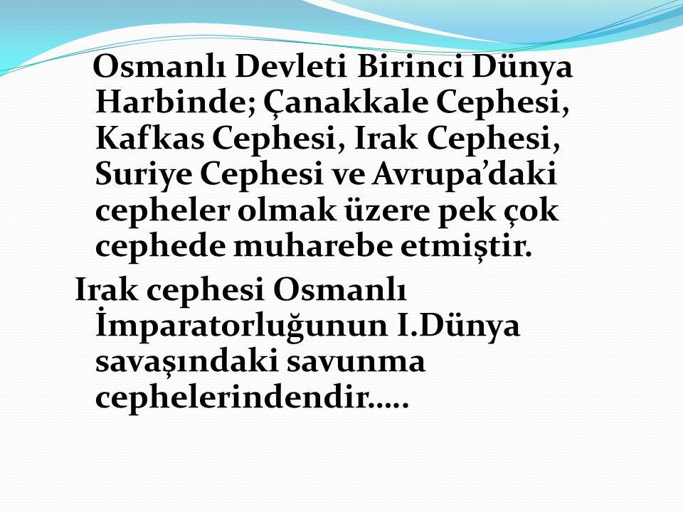 Osmanlı Devleti Birinci Dünya Harbinde; Çanakkale Cephesi, Kafkas Cephesi, Irak Cephesi, Suriye Cephesi ve Avrupa'daki cepheler olmak üzere pek çok cephede muharebe etmiştir.