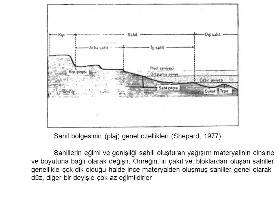 Sahil bölgesinin (plaj) genel özellikleri (Shepard, 1977). Sahillerin eğimi ve genişliği sahili oluşturan yağışım materyalinin cinsine ve boyutuna ba