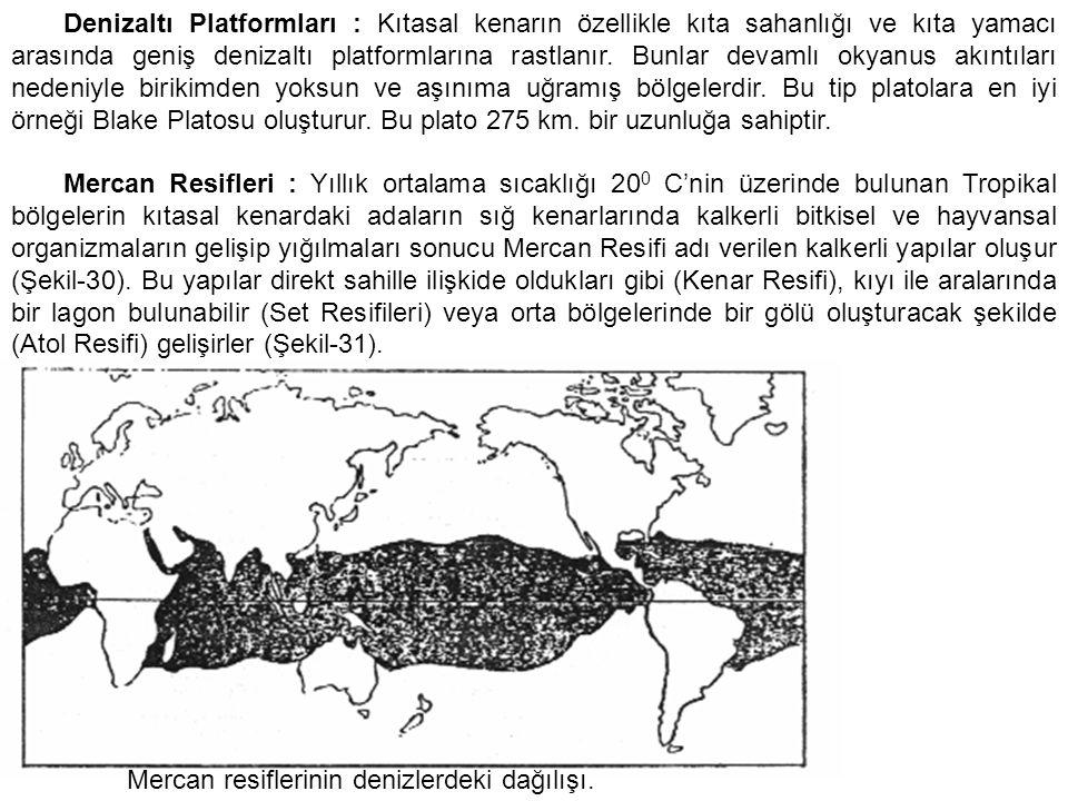 Denizaltı Platformları : Kıtasal kenarın özellikle kıta sahanlığı ve kıta yamacı arasında geniş denizaltı platformlarına rastlanır. Bunlar devamlı oky