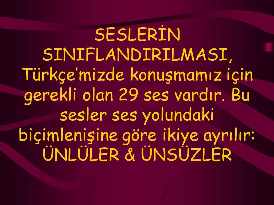 SESLERİN SINIFLANDIRILMASI, Türkçe'mizde konuşmamız için gerekli olan 29 ses vardır.