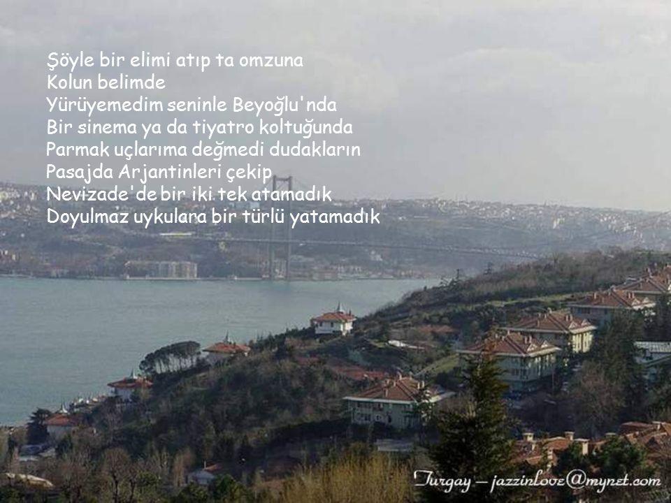Bir tepeden seyretmek için bu güzelim kenti Ne Çamlıca kısmet oldu ne Piyer Loti... Hiçbir vapur taşımadı bizi Marmara'da Bir güvertede seni Liseli aş