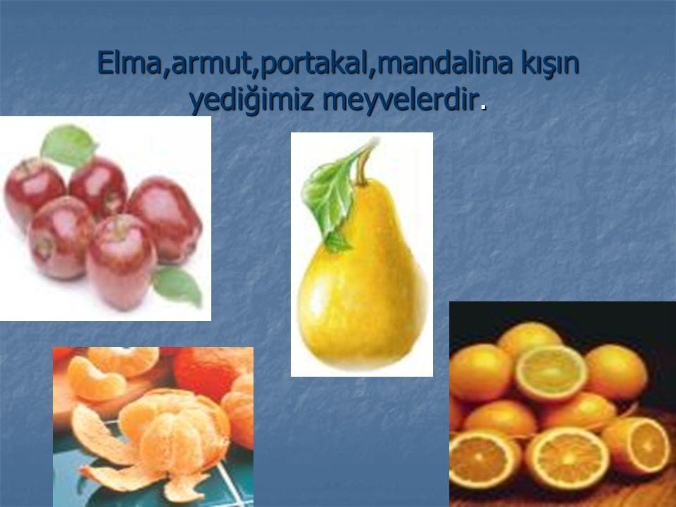 Elma,armut,portakal,mandalina kışın yediğimiz meyvelerdir.
