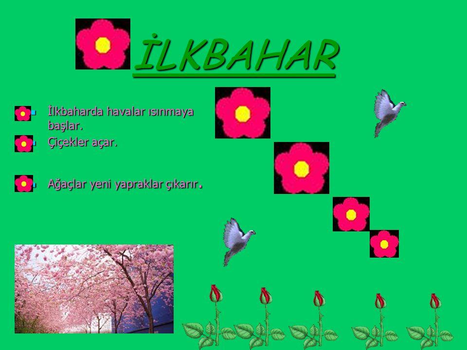 İLKBAHAR İlkbaharda havalar ısınmaya başlar. İlkbaharda havalar ısınmaya başlar. Çiçekler açar. Çiçekler açar. Ağaçlar yeni yapraklar çıkarır. Ağaçlar