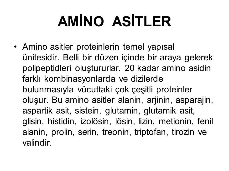 AMİNO ASİTLER Amino asitler proteinlerin temel yapısal ünitesidir. Belli bir düzen içinde bir araya gelerek polipeptidleri oluştururlar. 20 kadar amin