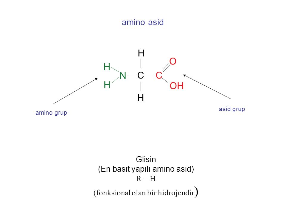 C H NH 2 COOH R  Genel amino asit yapısı C H NH 2 COOH C C C C      Karbonların sıralanması