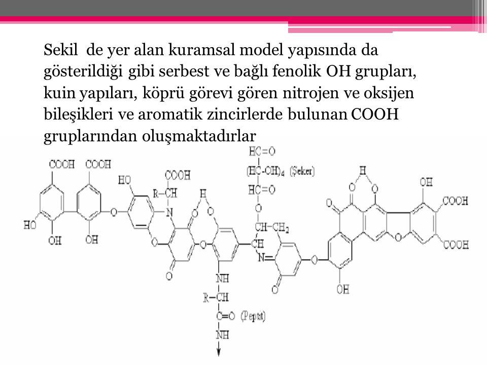 Sekil de yer alan kuramsal model yapısında da gösterildiği gibi serbest ve bağlı fenolik OH grupları, kuin yapıları, köprü görevi gören nitrojen ve ok