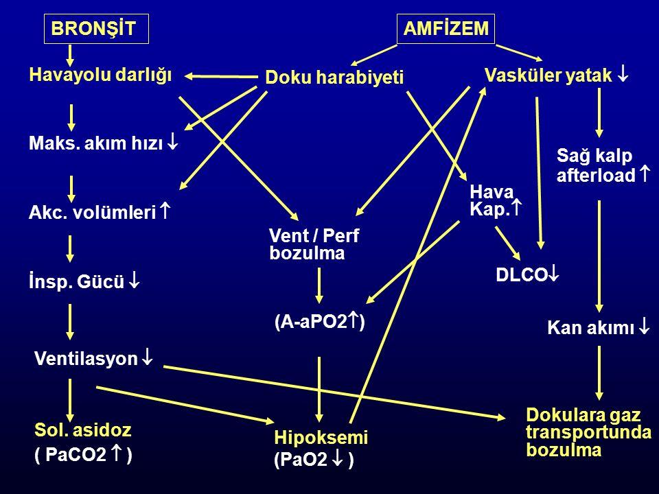 BRONŞİTAMFİZEM Havayolu darlığı Maks. akım hızı  Akc. volümleri  İnsp. Gücü  Ventilasyon  Sol. asidoz ( PaCO2  ) Hipoksemi (PaO2  ) Dokulara gaz