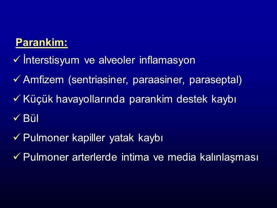 Parankim: İnterstisyum ve alveoler inflamasyon Amfizem (sentriasiner, paraasiner, paraseptal) Küçük havayollarında parankim destek kaybı Bül Pulmoner