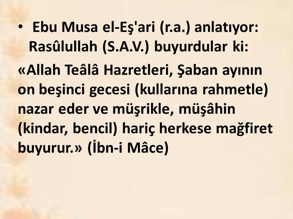 Ebu Musa el-Eş ari (r.a.) anlatıyor: Rasûlullah (S.A.V.) buyurdular ki: «Allah Teâlâ Hazretleri, Şaban ayının on beşinci gecesi (kullarına rahmetle) nazar eder ve müşrikle, müşâhin (kindar, bencil) hariç herkese mağfiret buyurur.» (İbn-i Mâce)