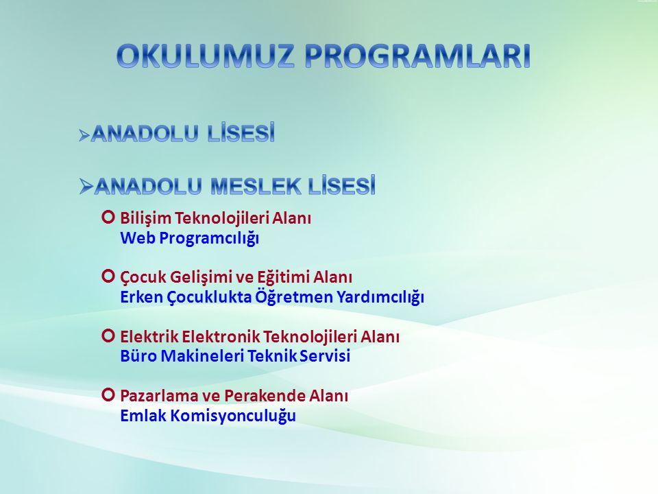 Bilişim Teknolojileri Alanı Web Programcılığı Çocuk Gelişimi ve Eğitimi Alanı Erken Çocuklukta Öğretmen Yardımcılığı Elektrik Elektronik Teknolojileri