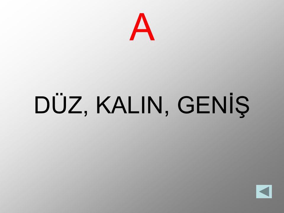 A DÜZ, KALIN, GENİŞ