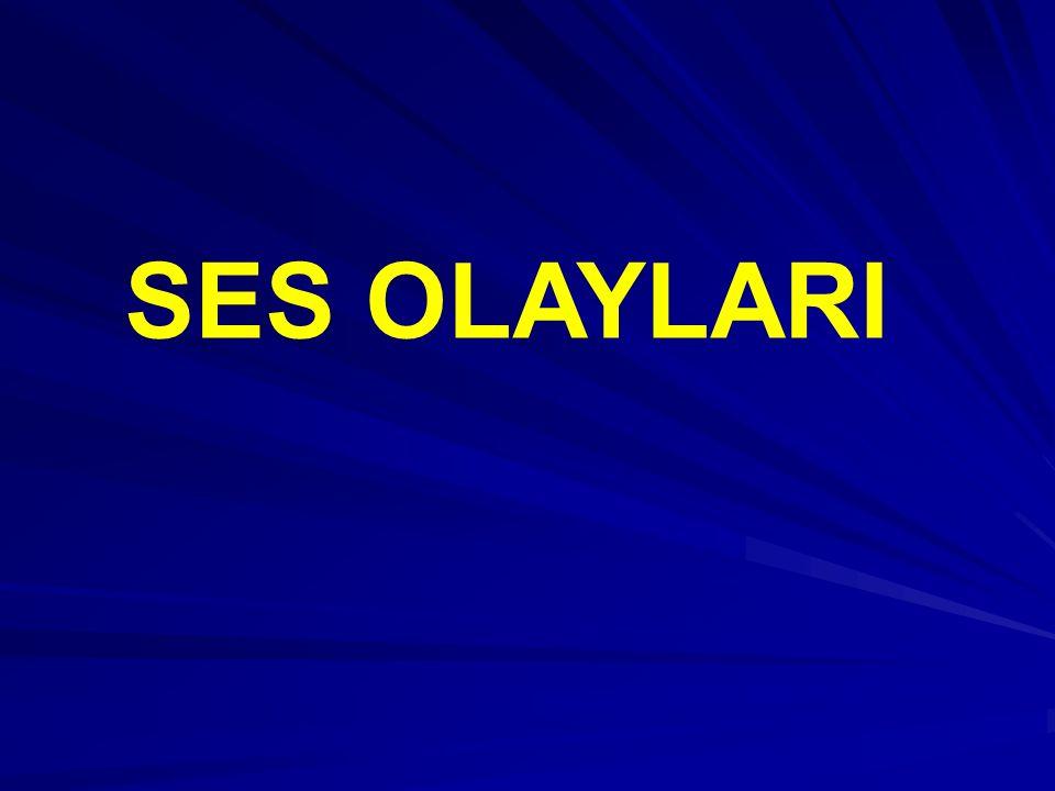 SES OLAYLARI