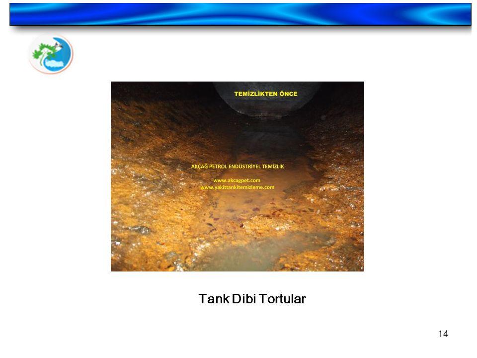 14 Tank Dibi Tortular