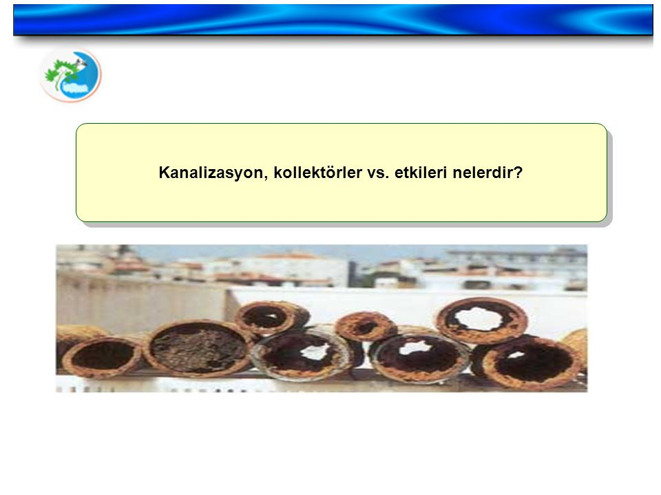 Kanalizasyon, kollektörler vs. etkileri nelerdir?