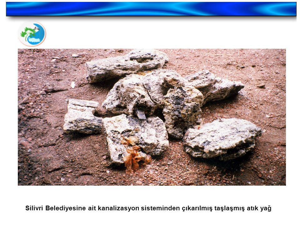 Silivri Belediyesine ait kanalizasyon sisteminden çıkarılmış taşlaşmış atık yağ