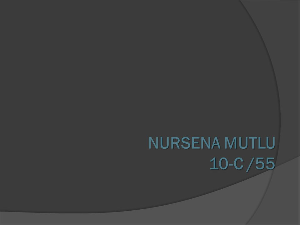 NURSENA MUTLU 10-C /55