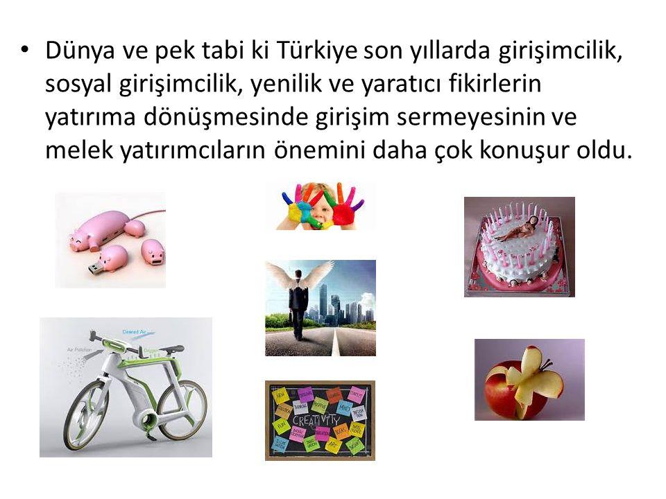 Dünya ve pek tabi ki Türkiye son yıllarda girişimcilik, sosyal girişimcilik, yenilik ve yaratıcı fikirlerin yatırıma dönüşmesinde girişim sermeyesinin