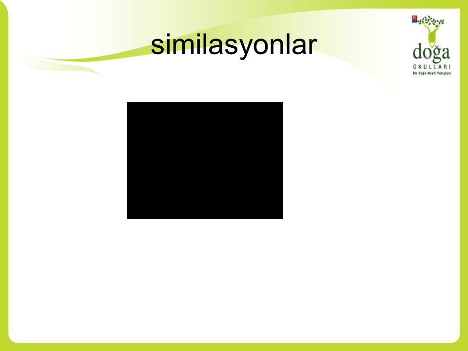 similasyonlar