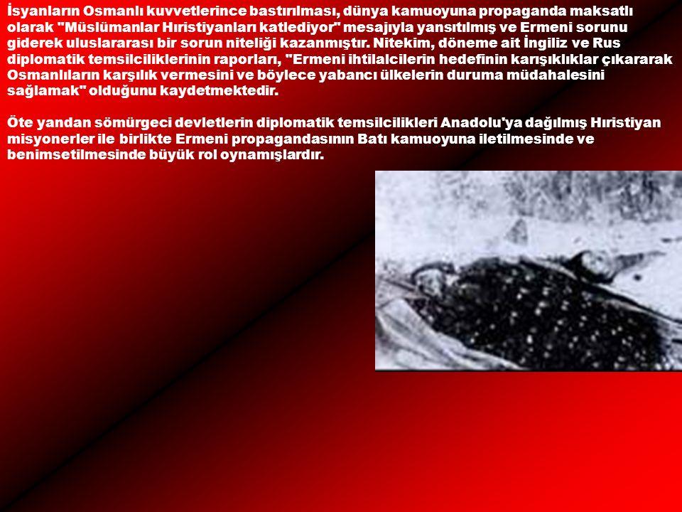 İsyanların Osmanlı kuvvetlerince bastırılması, dünya kamuoyuna propaganda maksatlı olarak Müslümanlar Hıristiyanları katlediyor mesajıyla yansıtılmış ve Ermeni sorunu giderek uluslararası bir sorun niteliği kazanmıştır.
