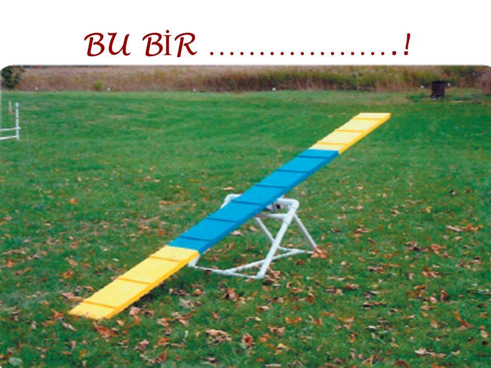 BU B İ R ……………….!