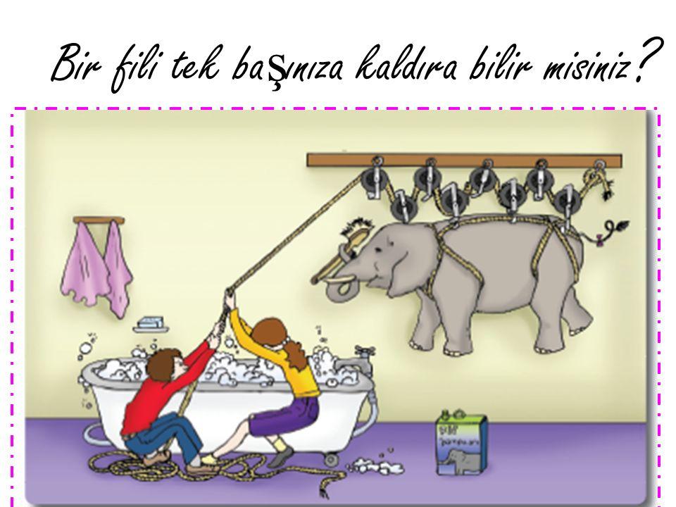 Bir fili tek ba ş ınıza kaldıra bilir misiniz ?