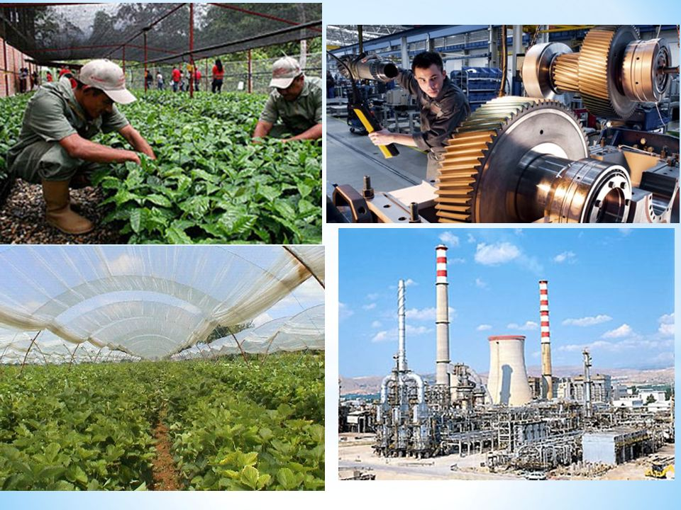 * 1.Birincil Faaliyetler * Birincil ekonomik faaliyetler doğadan doğrudan elde edilen ve genelde sanayiye hammadde sunan faliyetlerdir.