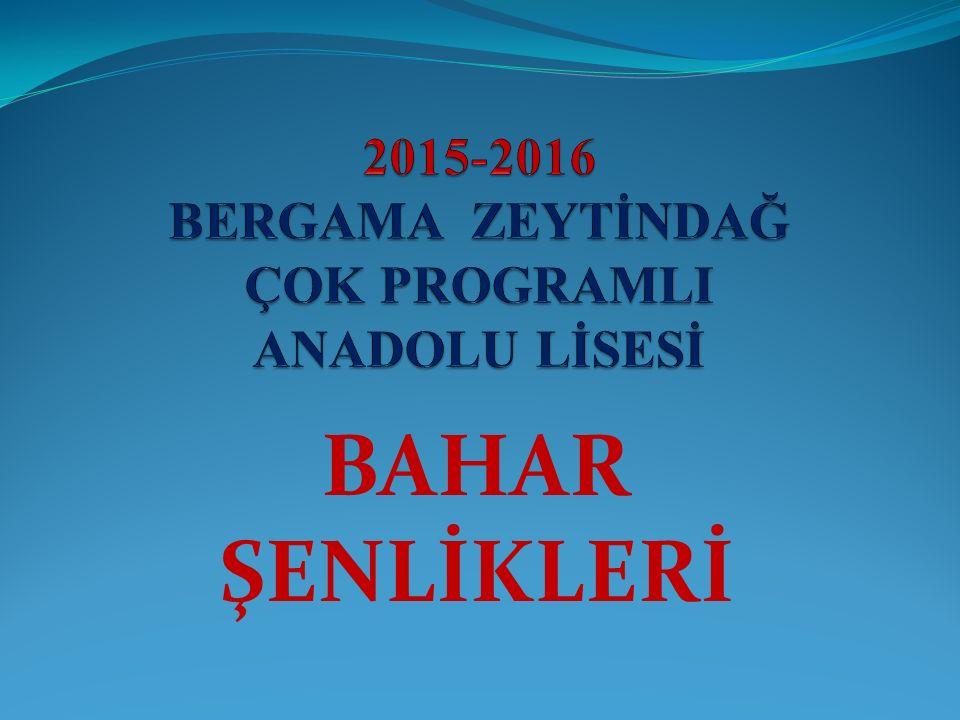 2015-2016 EĞİTİM ÖĞRETİM YILI BERGAMA ZEYTİNDAĞ ÇOK PROGRAMLI ANADOLU LİSESİ DART 1.