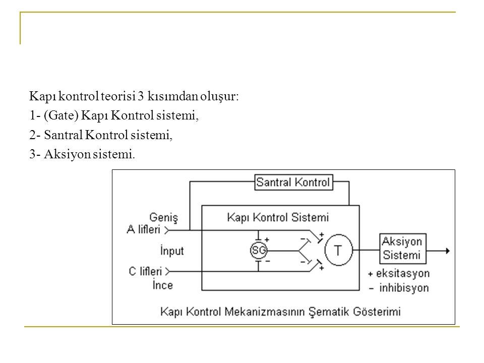 Kapı kontrol teorisi 3 kısımdan oluşur: 1- (Gate) Kapı Kontrol sistemi, 2- Santral Kontrol sistemi, 3- Aksiyon sistemi.