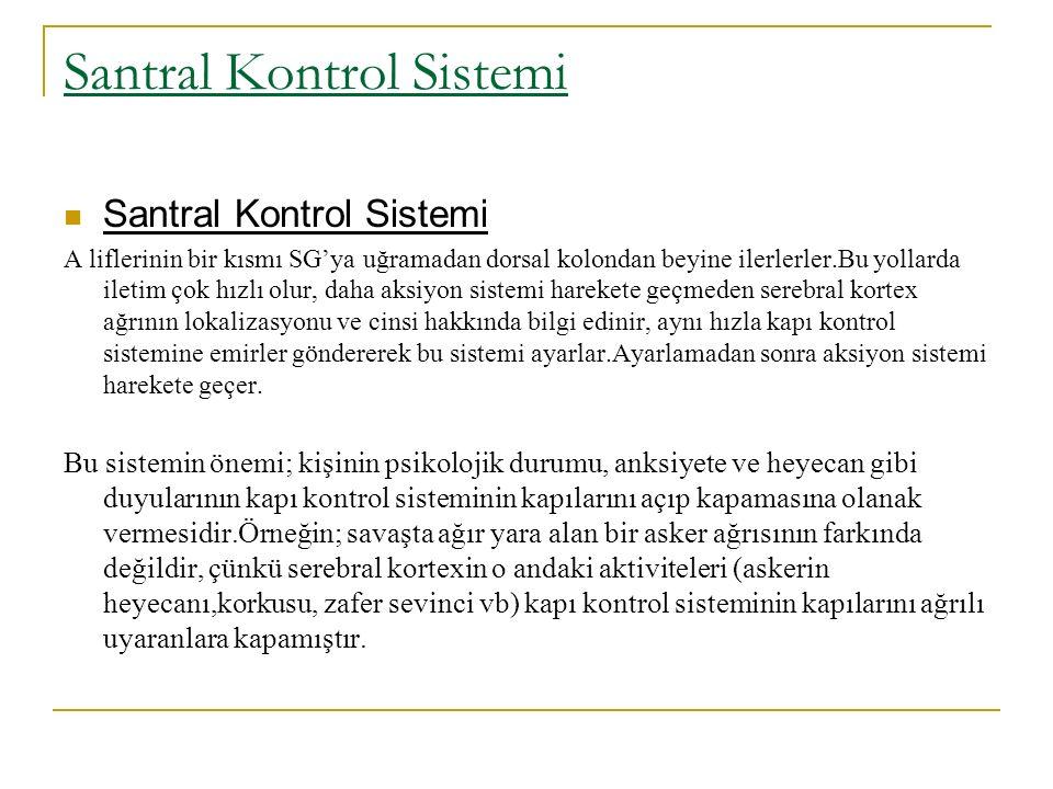 Santral Kontrol Sistemi A liflerinin bir kısmı SG'ya uğramadan dorsal kolondan beyine ilerlerler.Bu yollarda iletim çok hızlı olur, daha aksiyon siste