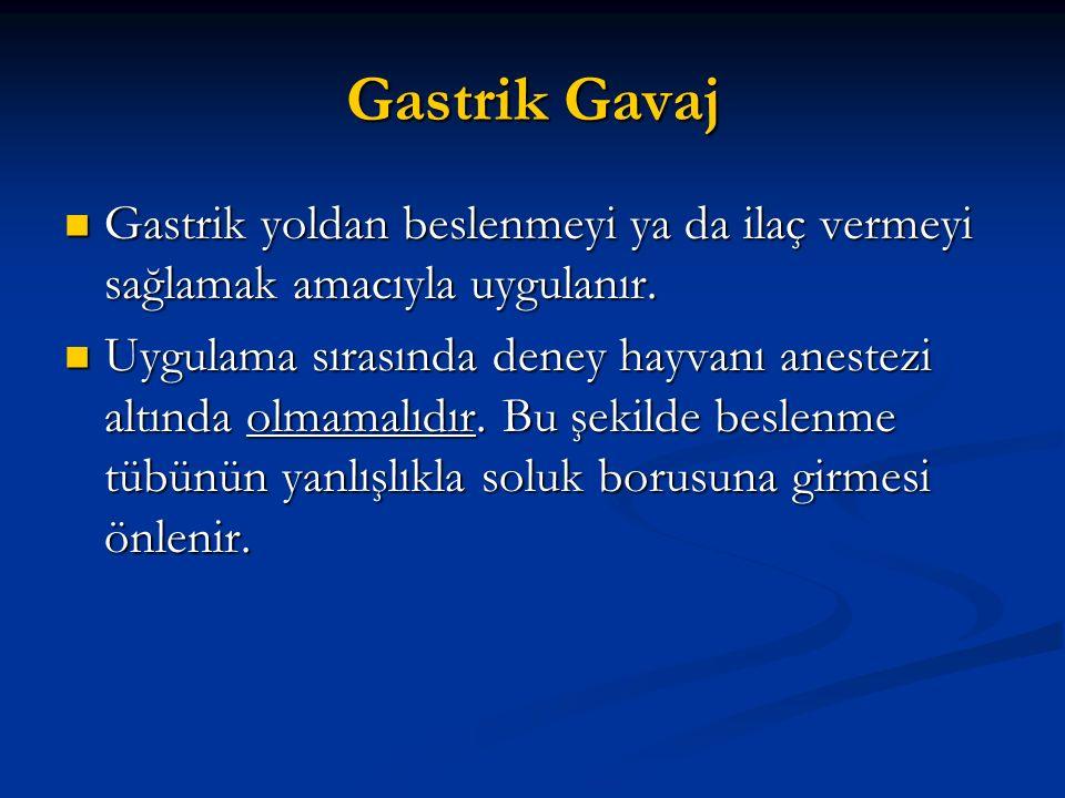Gastrik Gavaj Gastrik yoldan beslenmeyi ya da ilaç vermeyi sağlamak amacıyla uygulanır. Gastrik yoldan beslenmeyi ya da ilaç vermeyi sağlamak amacıyla
