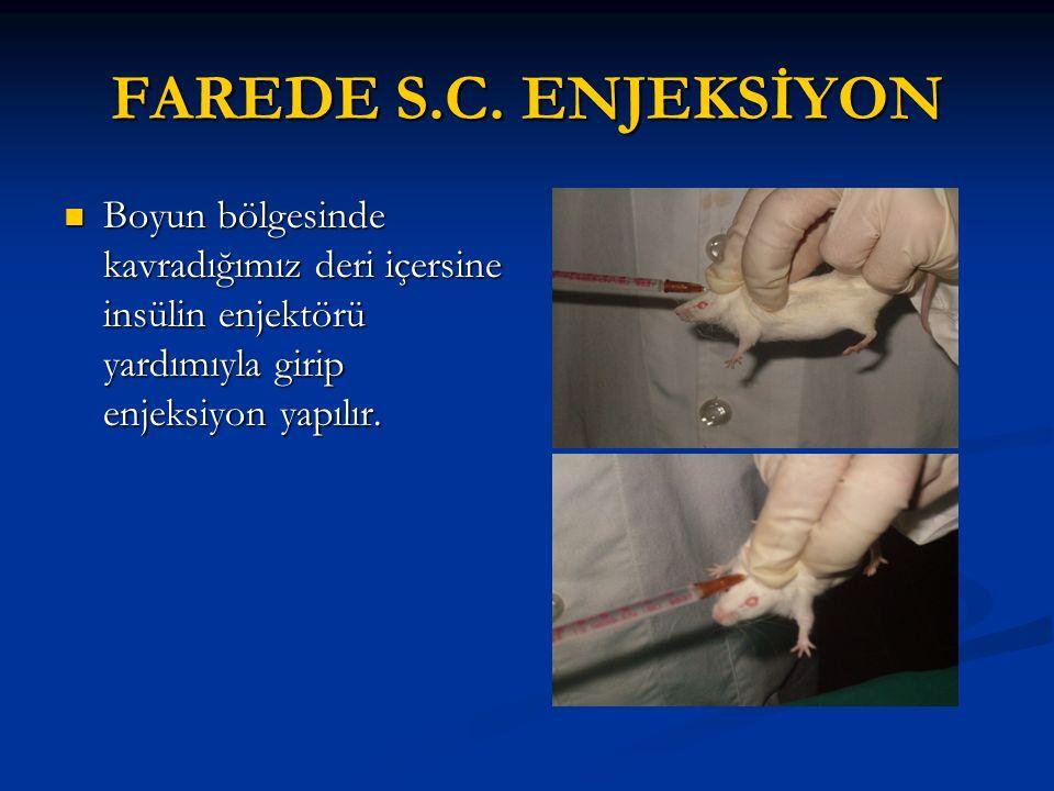FAREDE S.C. ENJEKSİYON Boyun bölgesinde kavradığımız deri içersine insülin enjektörü yardımıyla girip enjeksiyon yapılır. Boyun bölgesinde kavradığımı