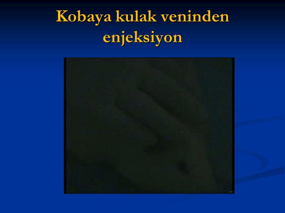 Kobaya kulak veninden enjeksiyon