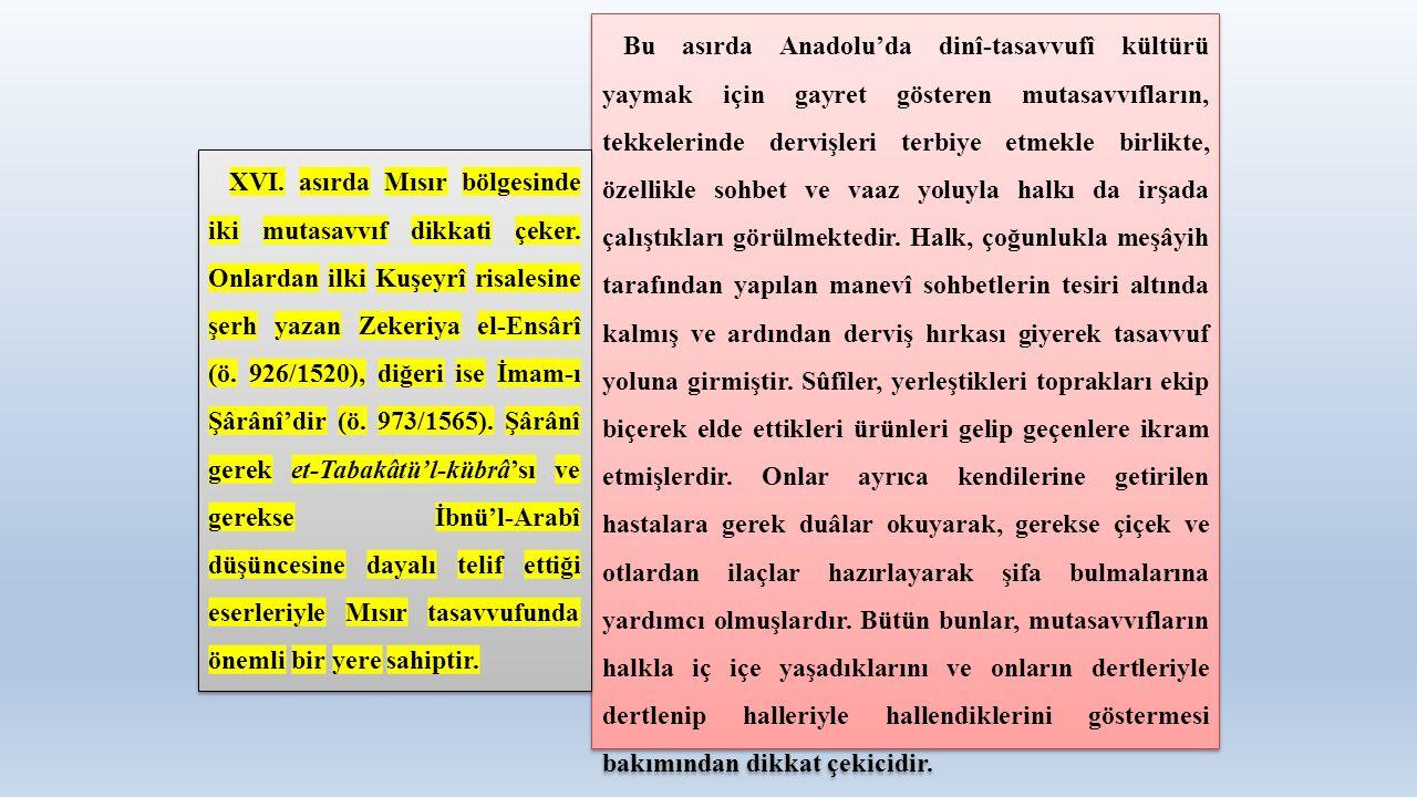 Bu asırda Anadolu'da dinî-tasavvufî kültürü yaymak için gayret gösteren mutasavvıfların, tekkelerinde dervişleri terbiye etmekle birlikte, özellikle s
