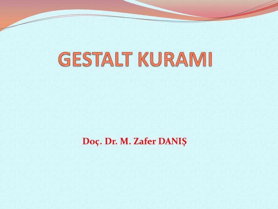 Doç. Dr. M. Zafer DANIŞ