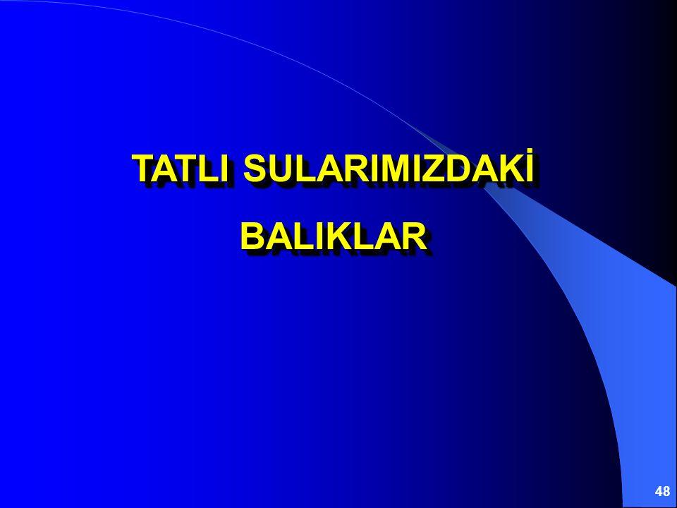 48 TATLI SULARIMIZDAKİ BALIKLAR BALIKLAR