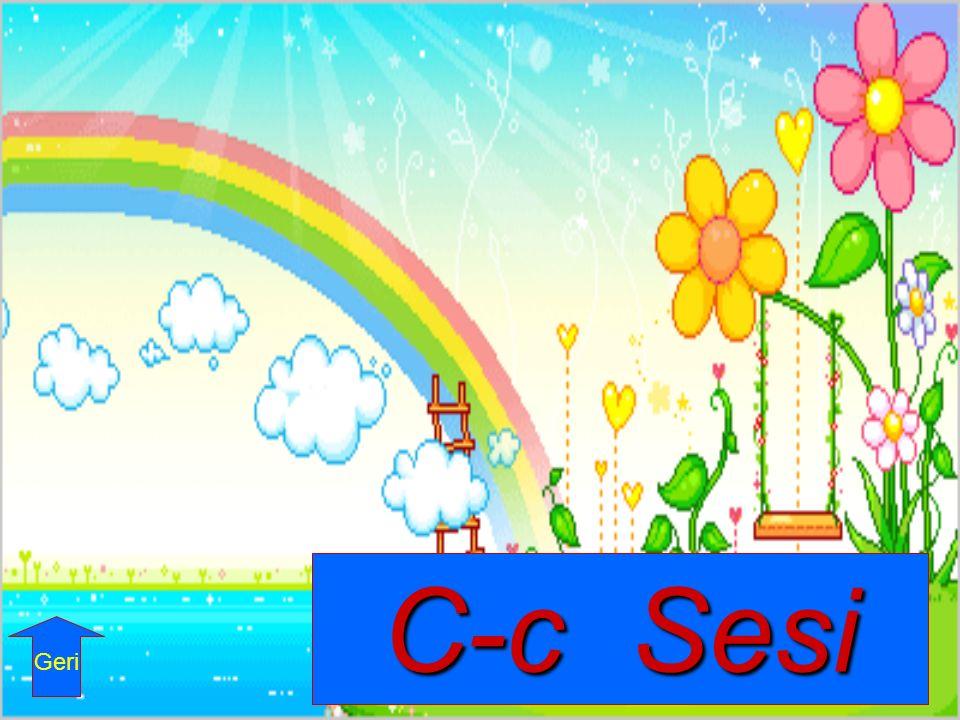 C-c Sesi