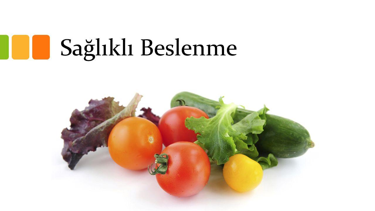 www.beslenme.gov.tr