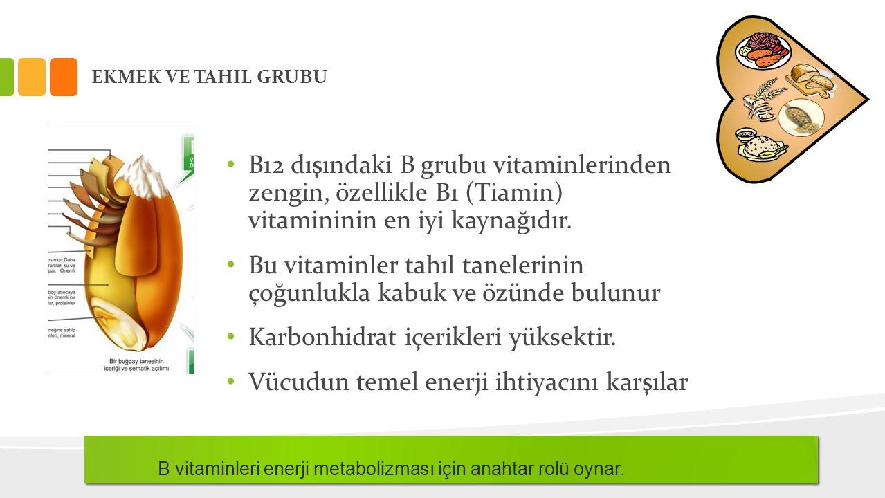 EKMEK VE TAHIL GRUBU B12 dışındaki B grubu vitaminlerinden zengin, özellikle B1 (Tiamin) vitamininin en iyi kaynağıdır. Bu vitaminler tahıl tanelerini