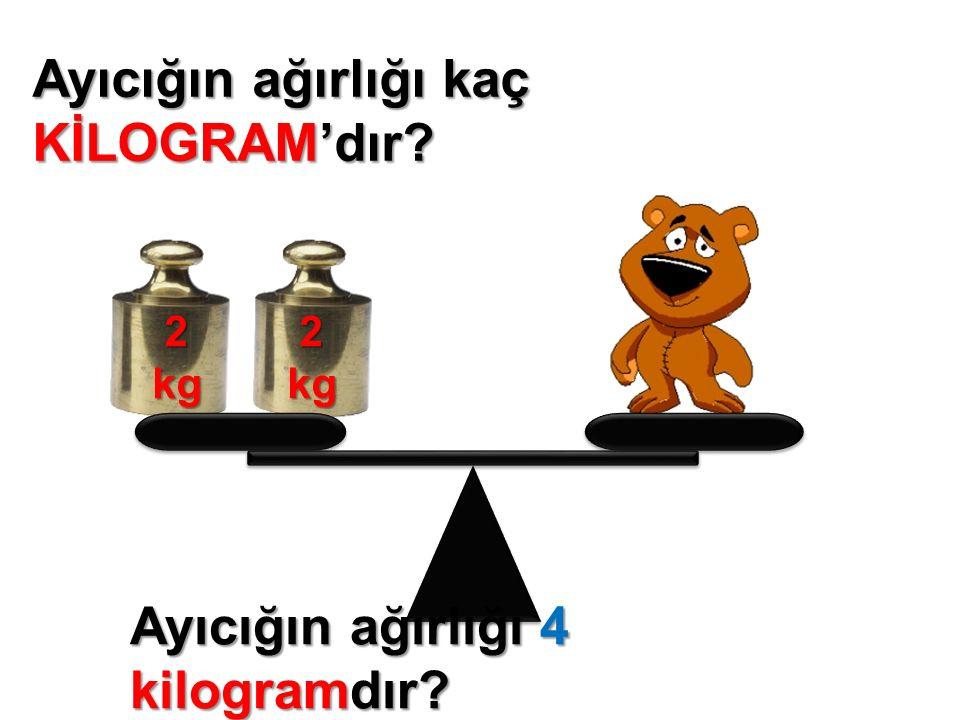 Elmaların ağırlığı kaç KİLOGRAM'dır? 2kg 3kg Elmaların ağırlığı 5 kilogramdır?