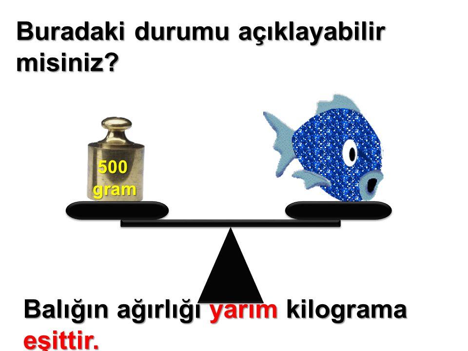 Buradaki durumu açıklayabilir misiniz? 500 500gram Balığın ağırlığı yarım kilograma eşittir.